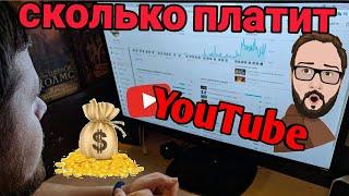 Сколько платит YouTube начинающему каналу. Статистика канала
