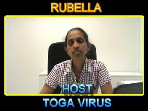 Rubella....in Short