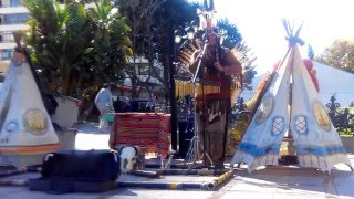 Native american music, Indianische Musik (Pop)   8