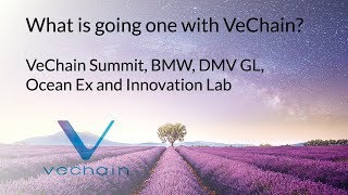 What is going one with VeChain? VeChain Summit, BMW, DMV GL, Ocean Ex and Innovation Lab