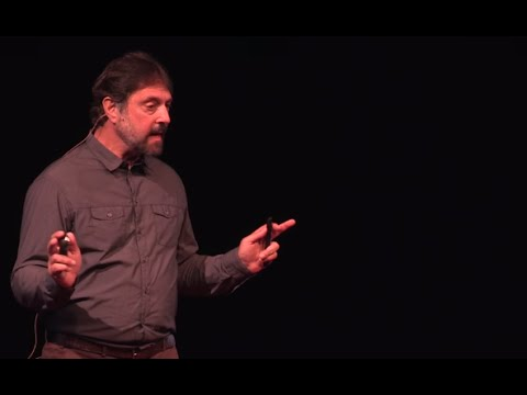Forensics and the Illegal Ivory Trade:  The Elephant in the Room   Sam Wasser   TEDxSanJuanIsland