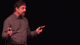 Forensics and the illegal ivory trade | Sam Wasser | TEDxSanJuanIsland