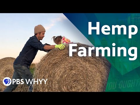 Hemp Farming – You Oughta Know (2020)