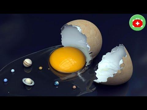 '계란' 먹은후 절대 한면 안되는 4가지! | SHARE 건강정보