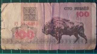 Обзор банкнота БЕЛАРУСЬ, 100 рублей, 1992 год, зубр, бона, купюра, бонистика, нумизматика, коллекция