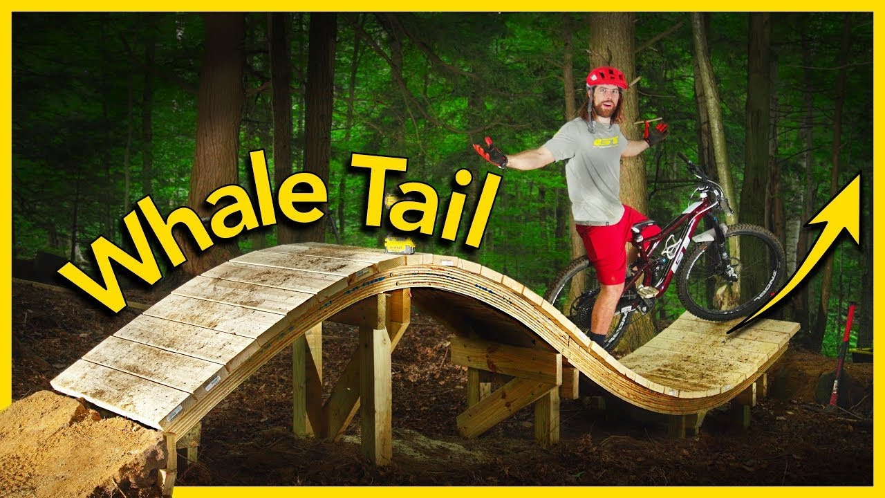 We Built A Whale Tail in our Backyard Bike Park!! 🐳