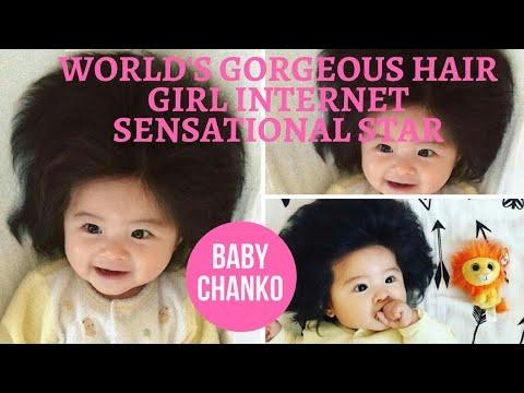 Baby Chanko World S Gorgeous Hair Girl Internet Sensational Star