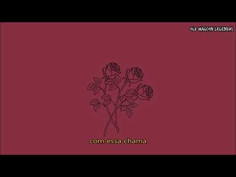 Roses - Shawn Mendes (Legendado PT/BR)