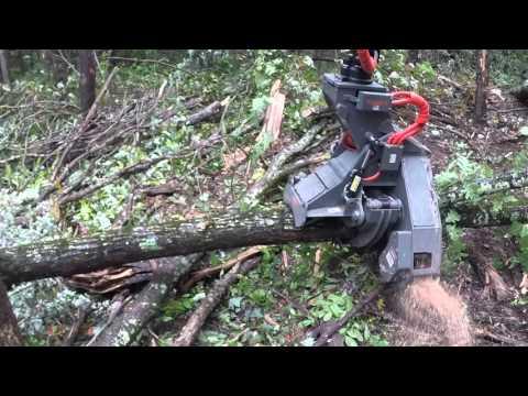Logger Shop Equipment Sales, Inc.  Ryan's  DS_28C  Dangle Saw Head GOPR0113