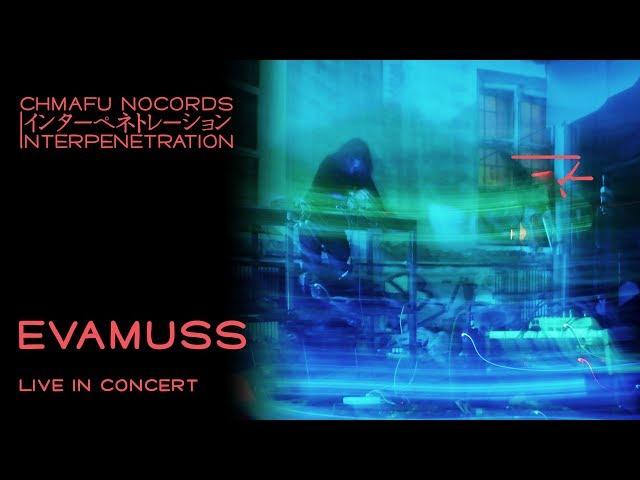 Evamuss @ Interpenetration 1.8.4