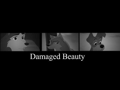 Damaged Beauty. {Jenna, Aleu, Tramp}