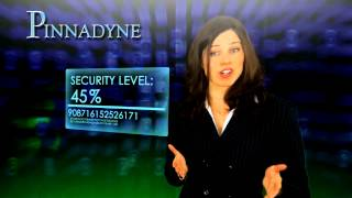 Pinnadyne Provides Network Security Services