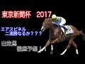 【東京新聞杯2017】セリ市でバイト経験のある学生が東京新聞杯を徹底予想!【競馬】