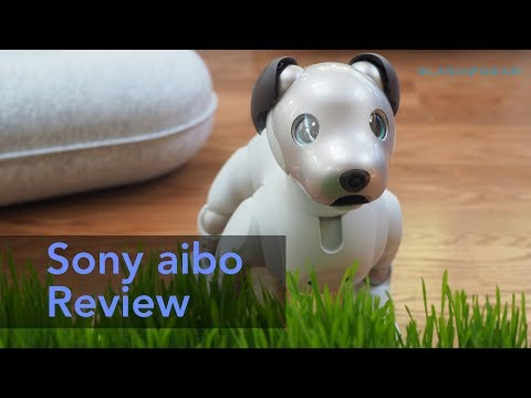 Sony aibo review (2018)
