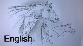 How to draw Horse heads for beginners / animal drawings / #14