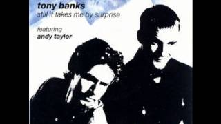 Watch Tony Banks Still It Takes Me By Surprise video