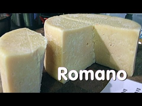 Making Vaccino Romano Cheese