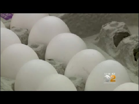 Daily Egg May Reduce Chance For Stunted Growth