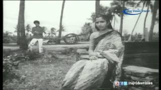 Neeradum Thamarai Song | Pudhiya Poovithu