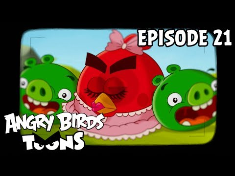 Angry Birds Toons - Hypno Pigs (Ep21 S1)