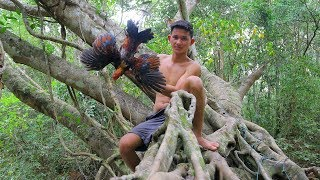 Awesome! Cooking Wild Chicken Soup Recipe on the Tree in Forest