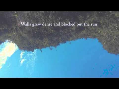 José González - The Nest (Lyric Video)