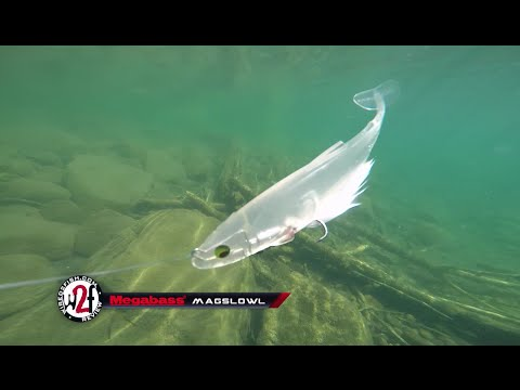 2016 Megabass New Release Fishing Lures Underwater