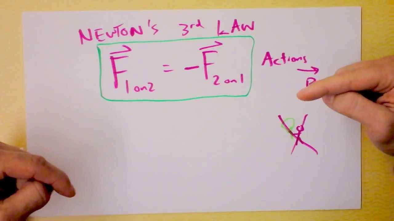 Newton's Laws | Boundless Physics