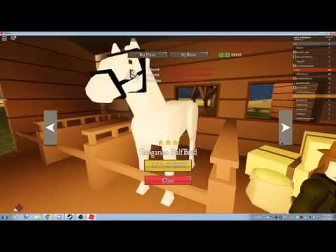 How to get the BEST horses in The Wild West ROBLOX - YouTube