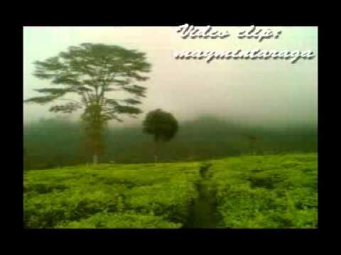 KEMUNING, Widyawati, Video: maymintaraga