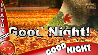 Good Night Wishes,Whatsapp Video,Greetings,Animation,Messages,Quotes,Sayings,Download