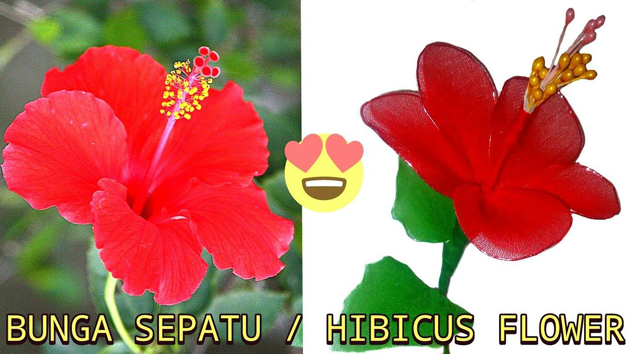 Diy Cara Membuat Bunga Sepatu Dari Kain Stoking How To Make Hibicus Flower From Nylon Stocking Youtube