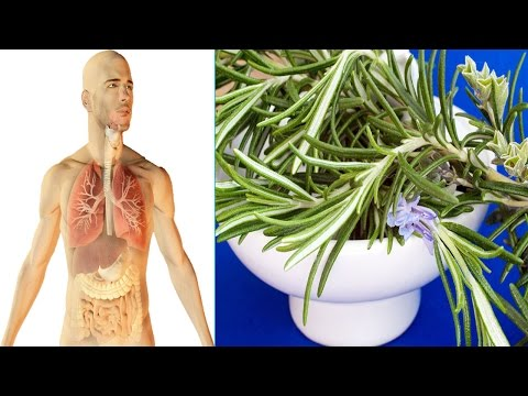 Here are the top 10 secret health benefits of rosemary for you.