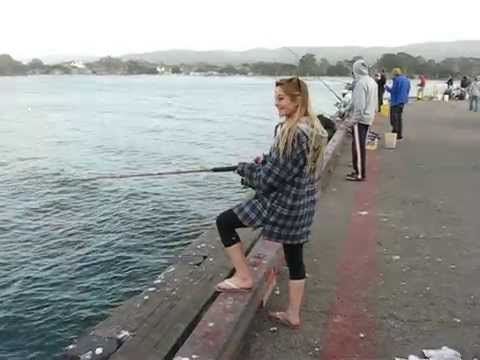 Monterey pier fishing mackerel and sardines youtube for Fishing without a license california