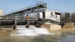 Wasserkraftwerk Rathausen produziert wieder Strom | CKW
