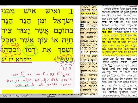 """הדף היומי מסכת חולין דף פח 88 יום שבת י""""ח אדר א' תשע""""ט DAF YOMI CHULLIN PAGE 88 SHMUEL NAVON"""