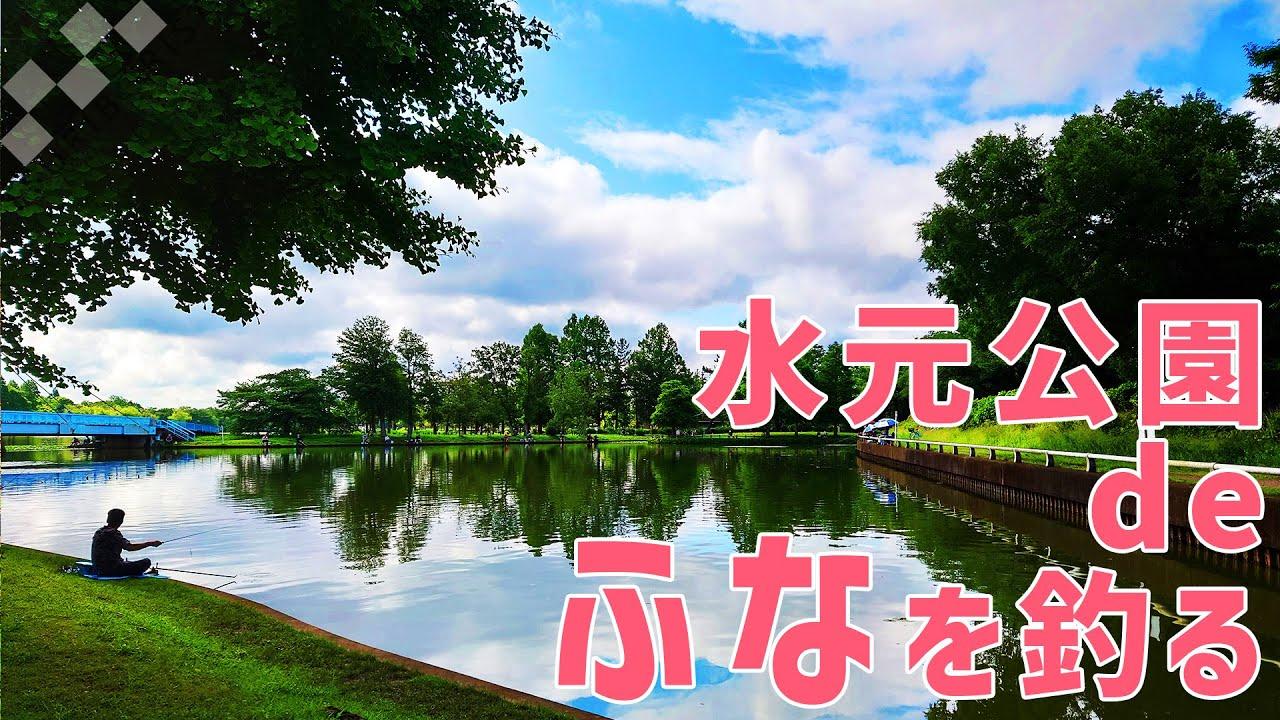【都立公園deフナ釣り】水元公園(東京都葛飾区)五月の晴れ空の下で鮒釣り!
