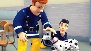 Sam il Pompiere italiano 🚒 Buon cane, cane cattivo 🔥Il meglio di Sam! 🔥 Cartoni animati