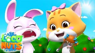 Бой за куклу мультфильмы для детей веселые Loco Nuts Russia детские видео