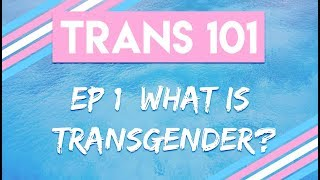 Welcome to the Trans 101 series! Today we kick this off be introduc...