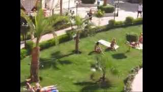 Animation Aqua Hotel Resort & Spa 4* ( Sharm Bride Hotel 4* ) Egypt, Sharm-El-Sheikh)