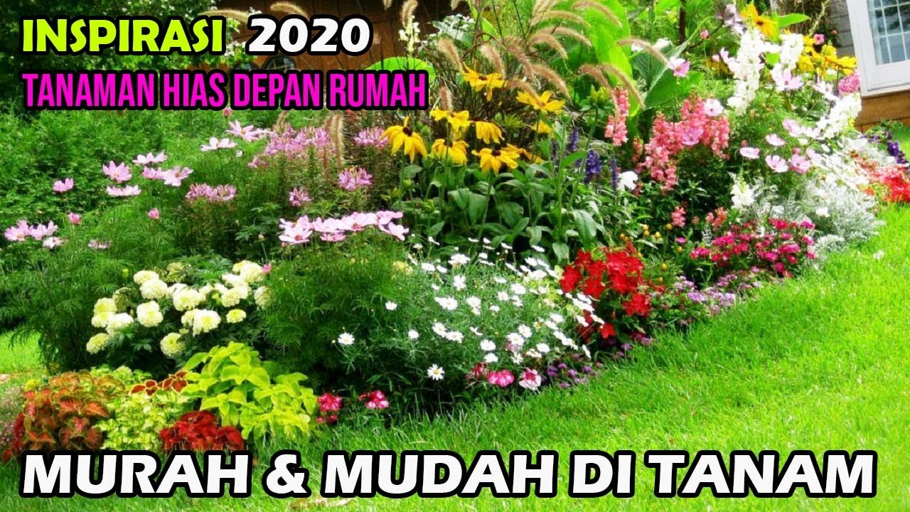 Tanaman Hias Taman Depan Rumah Minimalis Aneka Macam Bunga Youtube