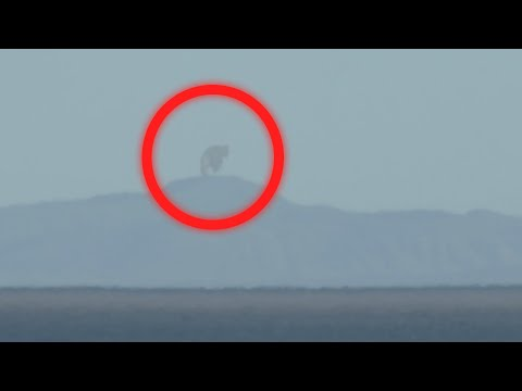 5 KING KONG caught on camera | spotted in real life