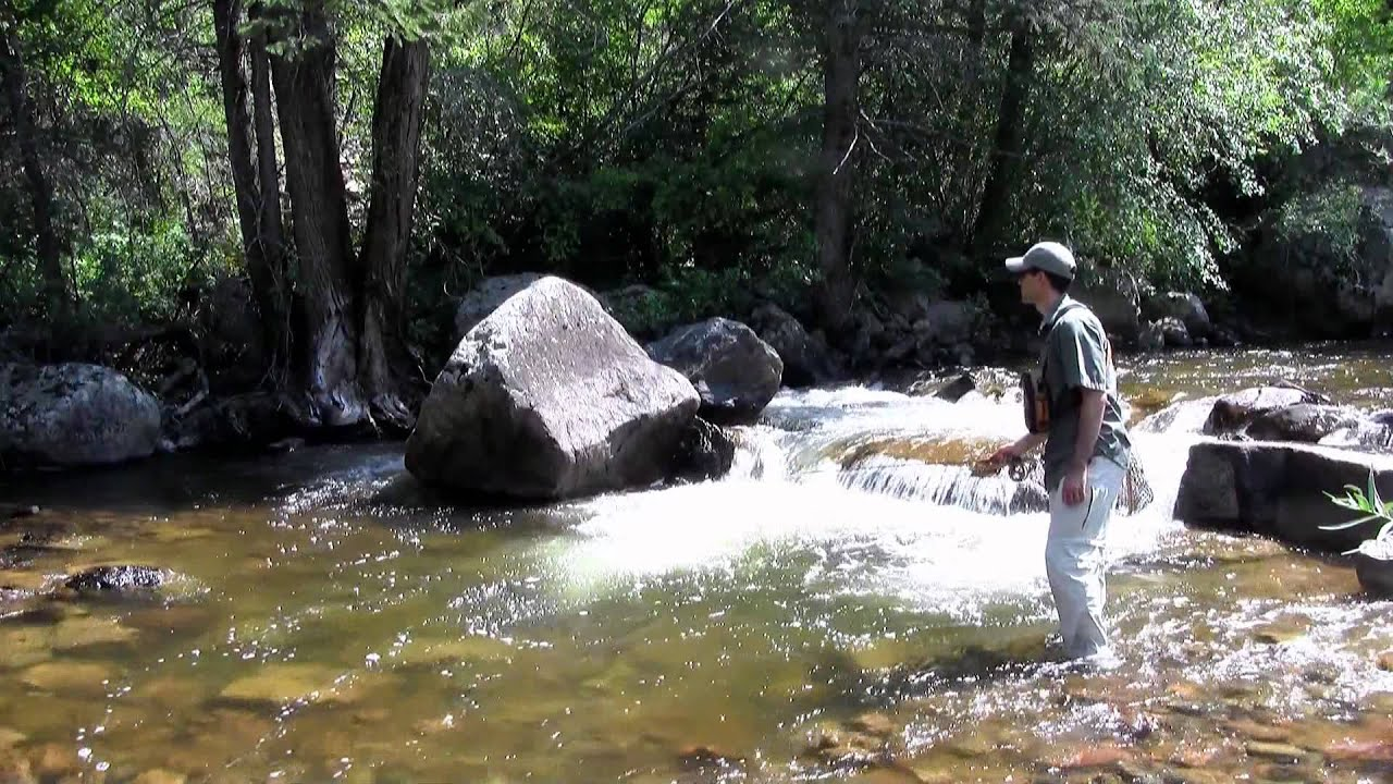 How to fly fish colorado 39 s freestone streams youtube for Fish and stream