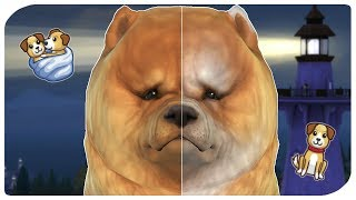 THE SIMS 4 | BIRTH TO DEATH - DOG EDITION