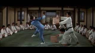 fist of fury and hapkido tribute