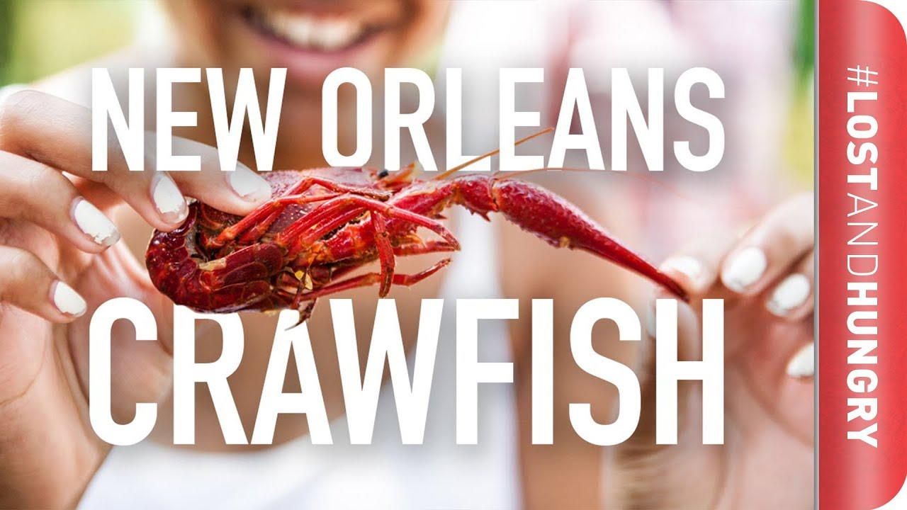 New Orleans  How Do You Eat Crawfish?! #lostandhungry