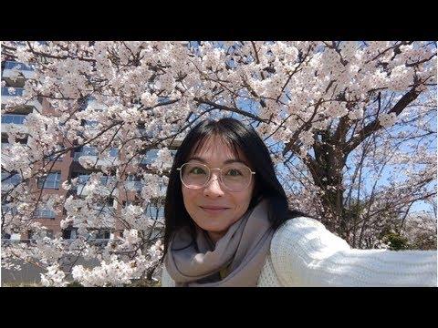 江祖平消失《大時代》了!剪妹妹頭回春日本流浪一個月