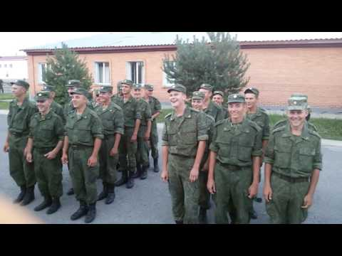 армейские приколы смотреть онлайн бесплатно