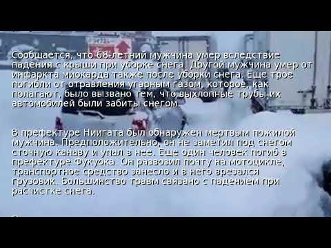 Жертвами снегопадов в Японии стали семь человек